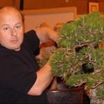 knotty pine