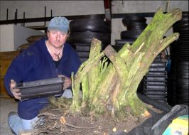In the Workshop Big Thorn Pot Image 1