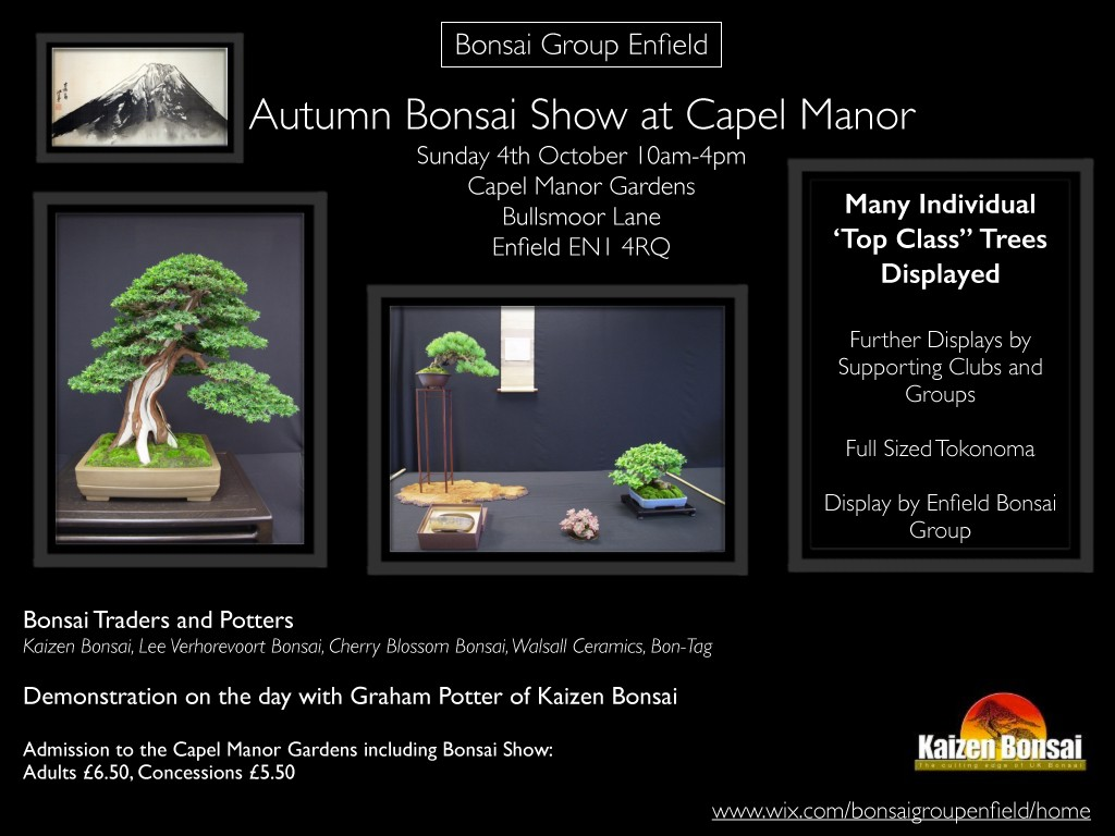 Autumn_show_flyer_2015 final 2