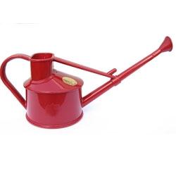 Bonsai Watering