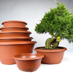 Bonsai Nursery Pots
