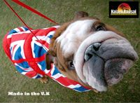 made in the UK bulldog