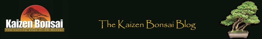 Kaizen Bonsai Blog