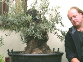 In the Workshop big Olives Image 1