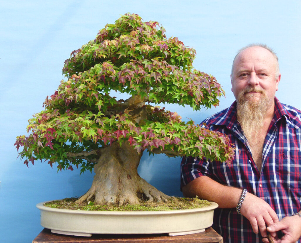 Bonsai. It's all about the trees