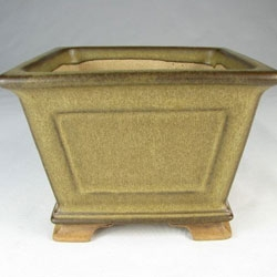 Hand Made Shohin Bonsai Pots by Walsall Studios
