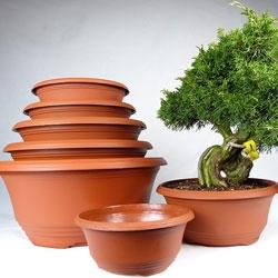 Bonsai Nursery Pots