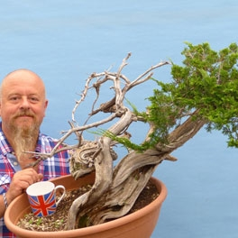 Bonsai Raw Material and Yamadori