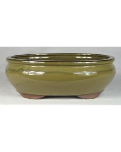 """Olive Glazed Oval Bonsai Pot - 8"""" - Colour and pattern may vary to some degree from that shown."""