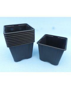 Square Plastic Nursery Pots - Bonsai Starter Pots - 10x Pack