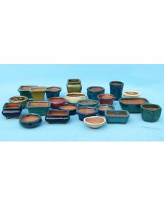 Miniature Bonsai Accent Plant Pots - Lucky Dip