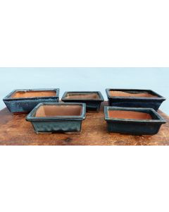 Glazed Bonsai Pots Clearance - 5x Used Bonsai Pots - Set 3