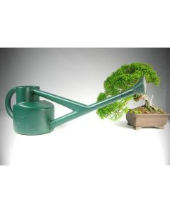 Small Bonsai Watering Can