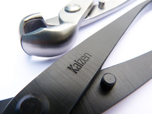 Kaizen Bonsai Black Carbon Steel tools