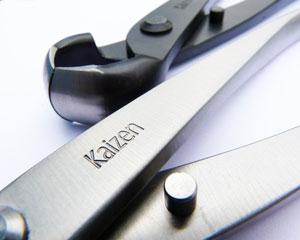 Kaizen Bonsai Stainless Steel tools