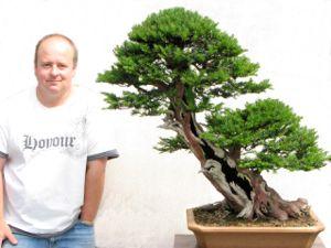 Preserving Bonsai Deadwood